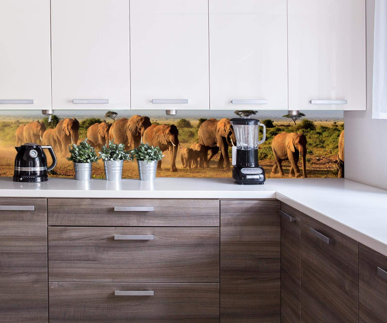 wandmotiv24 Küchenrückwand Elefantenherde am Kilimandscharo Nischenrückwand Spritzschutz Design M0522 240 x 60cm B x H Acrylglas 4mm Rückwand Küche Fotorückwand Küchenbild Bild Foto Motiv Herd