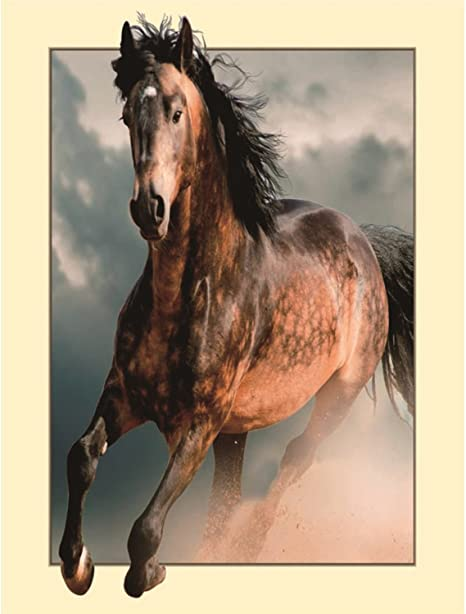 MXJ DIY 5D Diamond Painting by Number Kits Full Round Drill Rhinestone Embroidery Cross Stitch Picture Art Craft for Home Wall Decor Brown Horse 12x16In