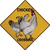 "Chicken Crossing 12"" X 12"" Aluminum Sign"
