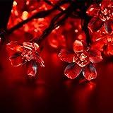 AWART Fairy String Lights Christmas Decorative
