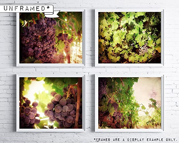 Amazon.com: Vineyard wall decor - Wine grapes decor - Kitchen wine ...
