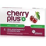 Cherry PLUS – Das Original. Montmorency Sauerkirsche: maximale Konzentration (50:1), naturrein und vegan. OHNE Zusatzstoffe und Zuckerzusatz von Cellavent Healthcare – 60 Cherry PLUS Kapseln
