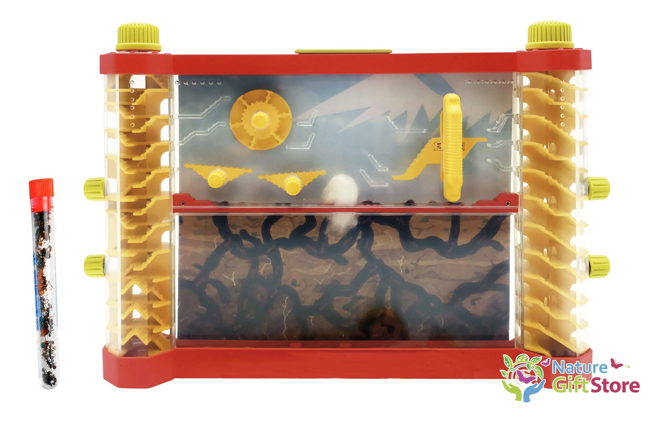 Nature Gift Store Interactive Ant Farm Shipped with Live Ants: See-Saws, Merry-go-Round, Ladders by Nature Gift Store