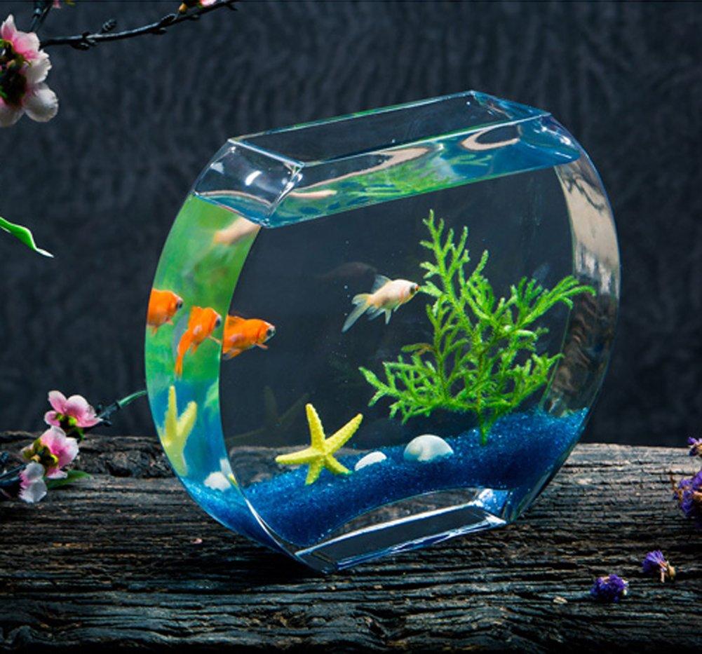 JIANGU creative fish tank, glass fish tank, oblate fish tank, living room aquarium, desk decoration fish tank