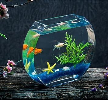 Jiangu - pecera creativa, pecera de cristal, pecera oblada, acuario de salón,