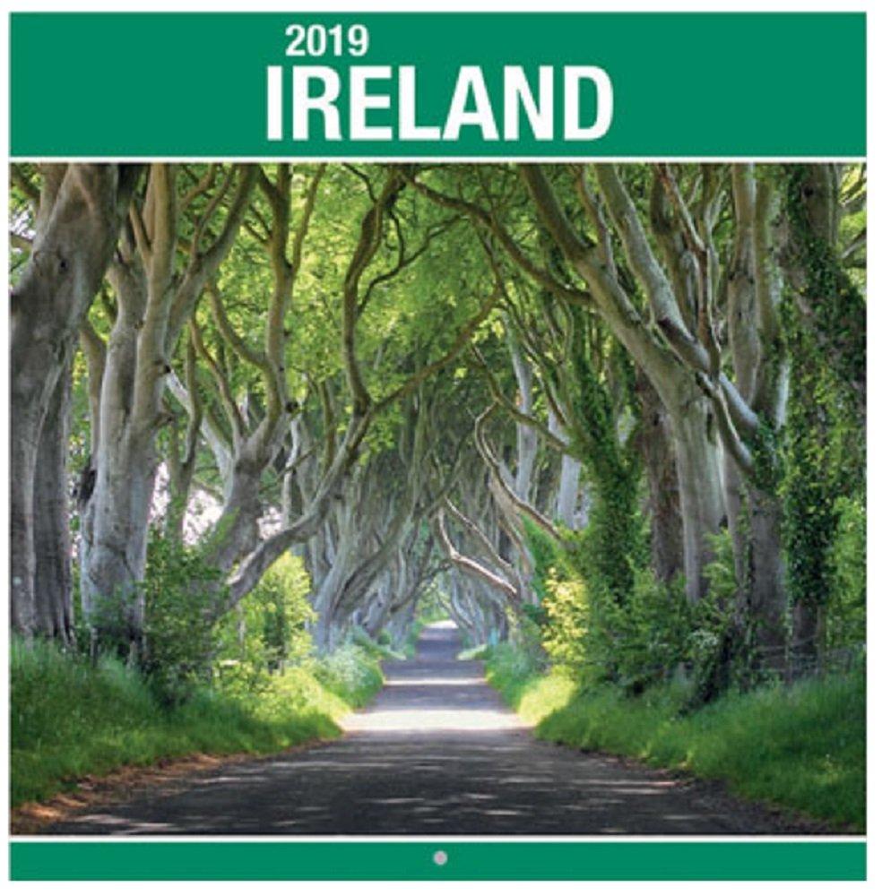 Calendario da parete 2019Irlanda Square Christmas Birthday Gift irlandese paesaggi Eire Castles fotografica scene Anker International