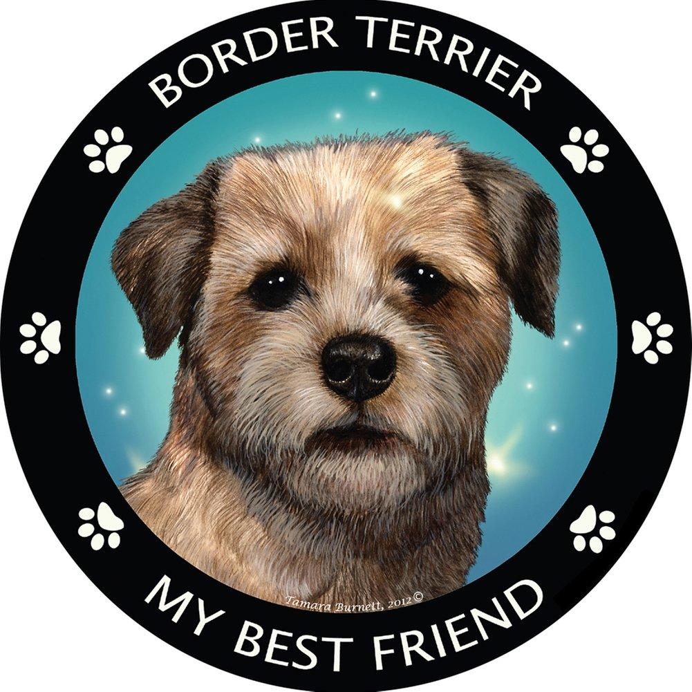 Ferret My Best Friend Magnet