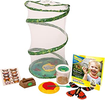 Insect Lore Live Butterfly Growing Kit Gift Box Set
