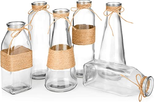 Glass Vases in Differing Unique Shapes Creative Rope Design – Set of 6