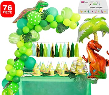 Amazon.com: Dinosaur Party Supplies Little Dino Party ...