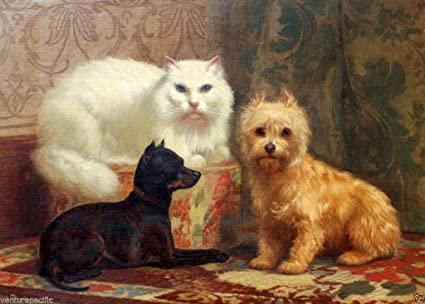 Amazon com: Persian Cat, a Miniature Pinscher and Terrier : J  H