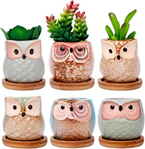 ROSE CREATE 6 Pcs 2.5 Inches Owl Pots with Bamboo, Little Ceramic Succulent Bonsai Pots with a Hole - Pack of 6