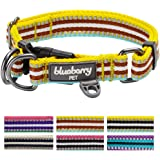 Blueberry Pet 3M Reflective Multi-colored Stripe Dog Collar, Dog Safety Car Seat Belt, Matching Leash & Harness Available Separately