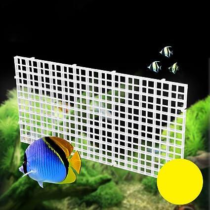 POPETPOP Fish Breeder Net Big Size Fry Tablero de Segregación con Abrazaderas para Acuario (Blanco