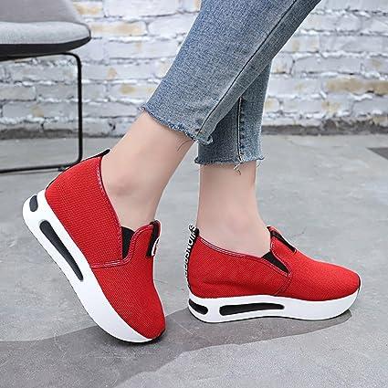 ZODOF Locasionales De La Plataforma De Las Mujeres Zapatos Pendiente De Malla Respirable Gruesa: Amazon.es: Ropa y accesorios