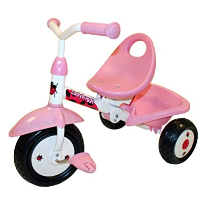 Kiddi-o by Kettler Fold 'n Ride Trike with Adjustable Seat: LadyBuggy, Youth Ages 1.5+: Toys & Games