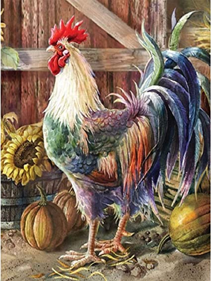Rooster Diamond Painting Kits 5D Full Drill Diamond Embroidery Dots Kits