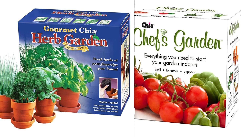 Chia Chefs Garden and Gourmet Herb Garden Combo