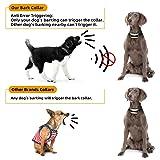 A+ TRAINERROOPZ Dog Bark Collar Anti Bark Collar