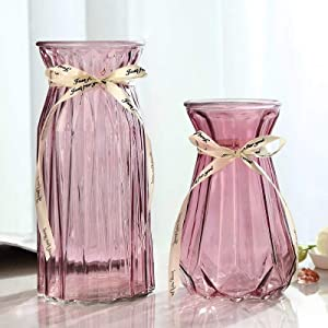 XILEI Glass Vase for Flower Home Decoration, Desk Placement or Gift Red Vase 2 Pieces (B2)