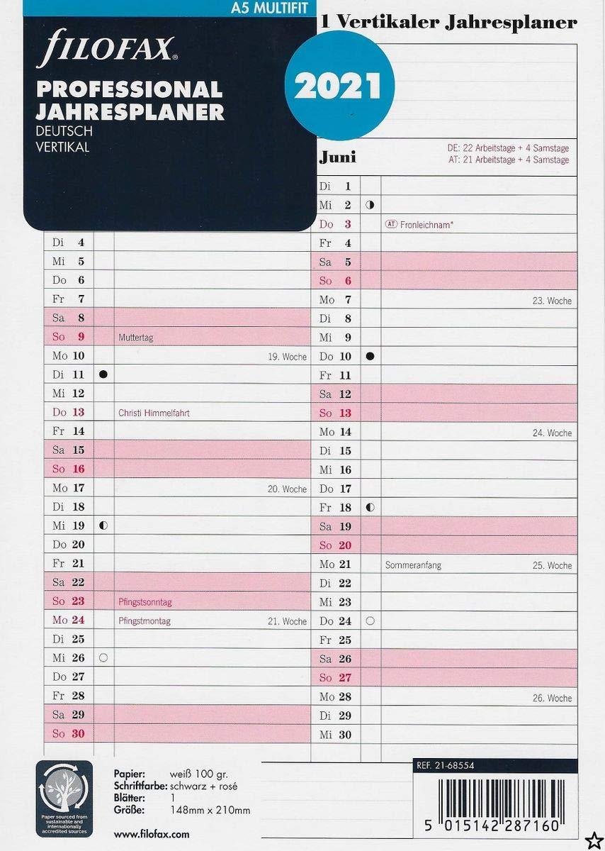 Professional Jahresplan 2021 deutsch vertikal Filofax Kalendereinlage Personal