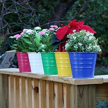 Amazon.com: Plantadores de cubeta de metal cesta Pot Varios ...