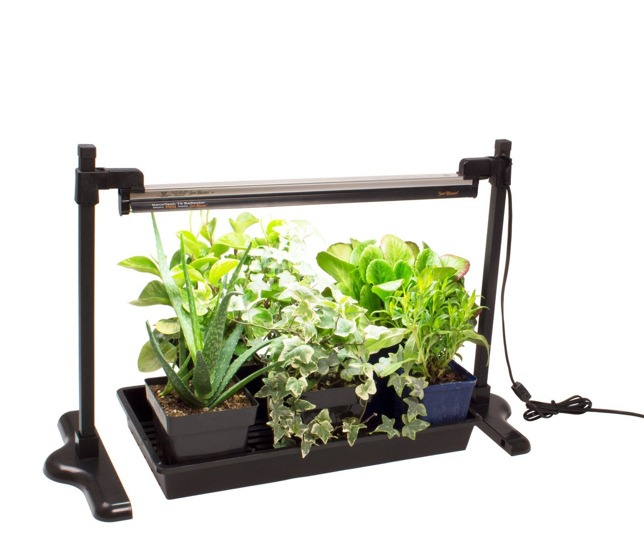 grow fluorescent lights plantozoid com flouroscent lighting