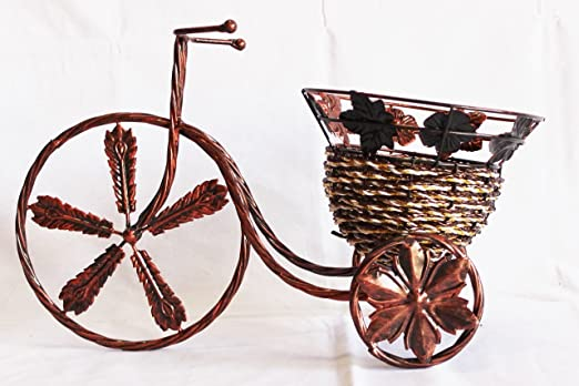 Para bicicleta macetero con Metal ratán y cesta de: Amazon.es: Jardín