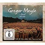 Gregor Meyle & Band - Live 2015