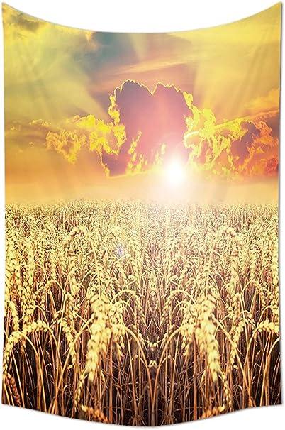 Tapiz amarillo para decorar las imágenes de los campos de ...