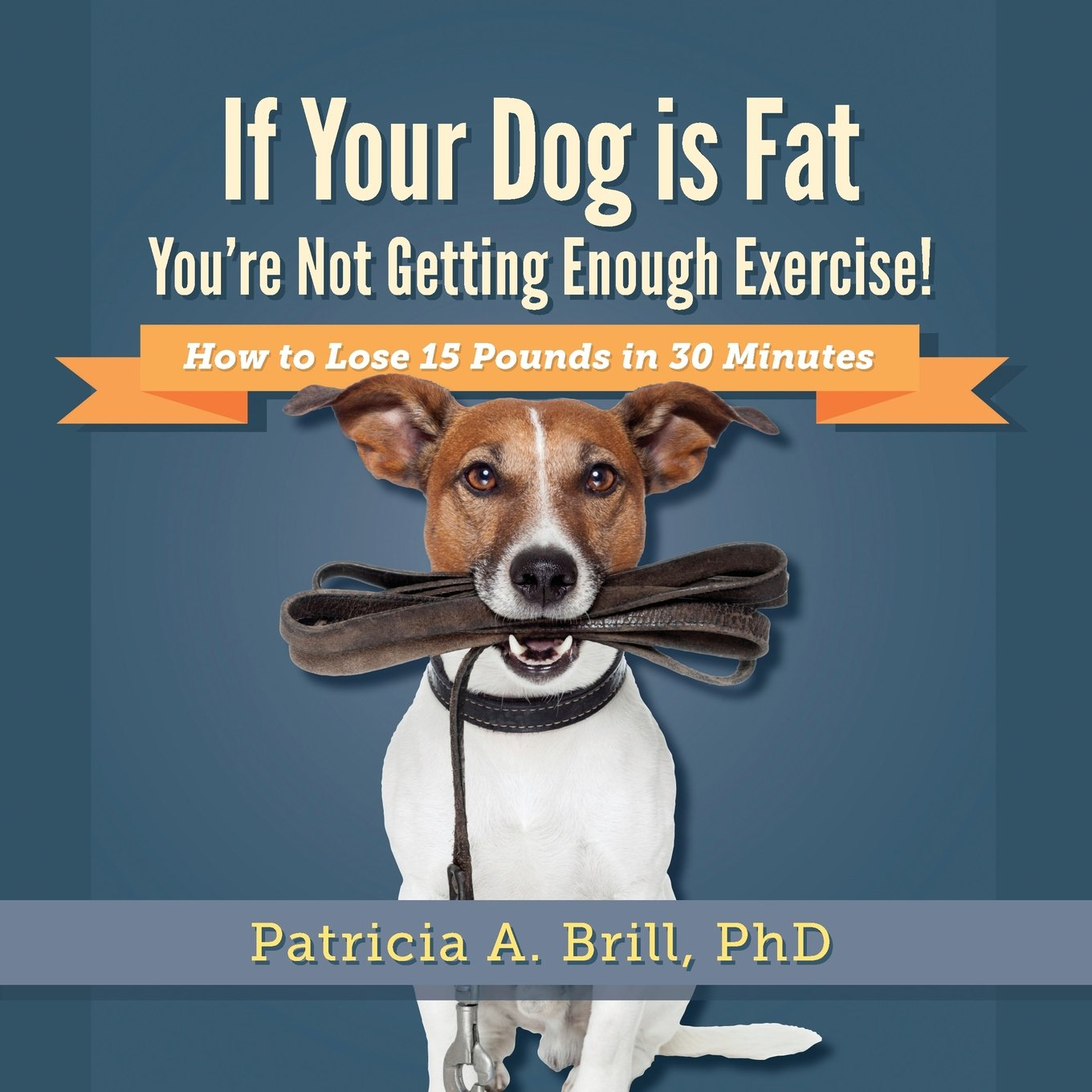 If Your Dog Is Fat You're Not Getting Enough Exercise!: How to Lose 15 Pounds in 30 Minutes pdf epub