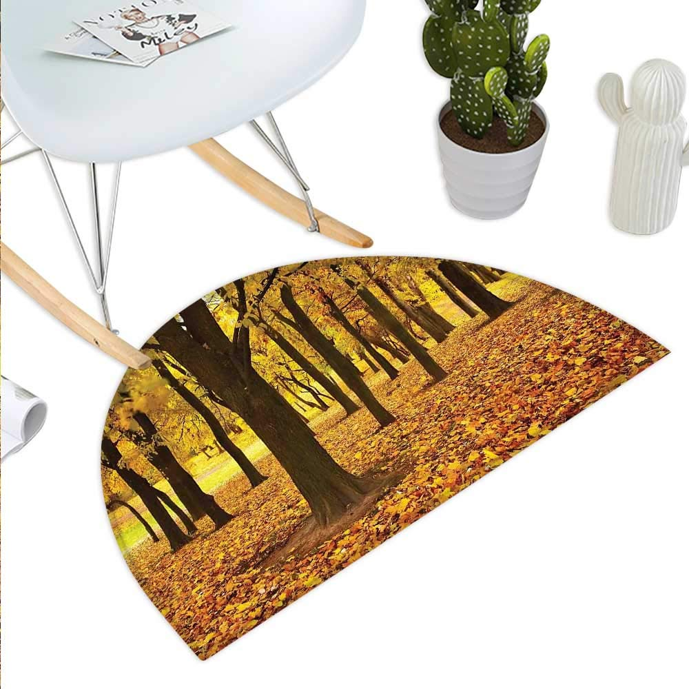 color10 H 35.4  xD 53.1  Landscape Semicircle Doormat Forest with Serene Giant Tree Body in The Foggy Forest Yosemite Mist Woodland Print Halfmoon doormats H 27.5  xD 41.3  Brown