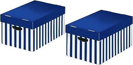 Nips 119219133 - Pack de 2 cajas de almacenaje con tapa, 31 x 52 x 24.5 cm, color azul: Amazon.es: Oficina y papelería