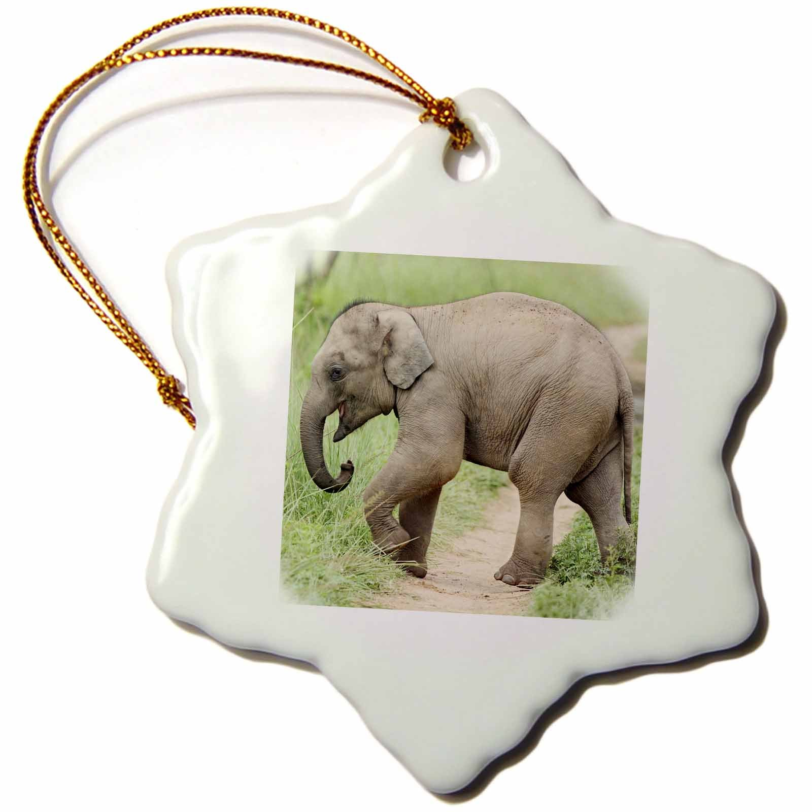 3dRose orn_71687_1 Baby Elephant Mother Corbett National Park India Jagdeep Rajput Snowflake Decorative Hanging Ornament, Porcelain, 3-Inch