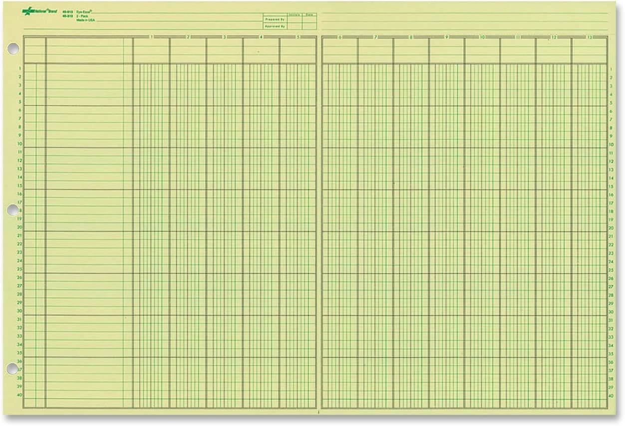"NATIONAL Analysis Pad, 13 Columns, Green Paper, 11 x 16.375"", 50 Sheets (45613)"