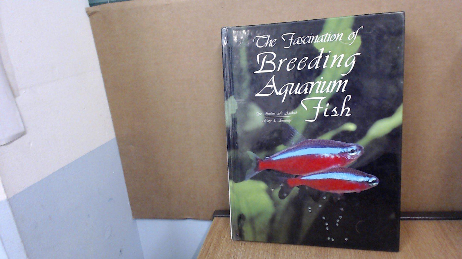 The Fascination of Breeding Aquarium Fish