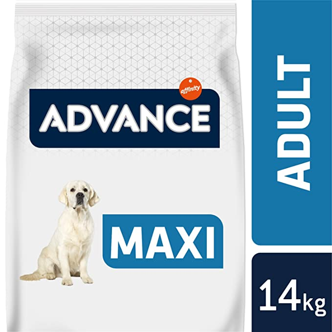 Advance Pienso para Perro Maxi Adulto con Pollo - 14000 gr: Amazon.es: Productos para mascotas