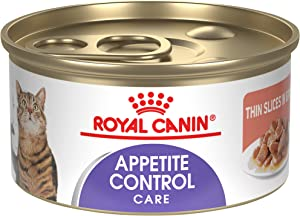 Royal Canin Feline Care Nutrition Appetite Control Thin Slices in Gravy Wet Cat Food, 3 Ounce Can (Pack of 24)