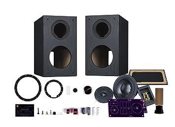 hivi diy 2 2a 2 2 bookshelf speakers near field speakers rh amazon ca
