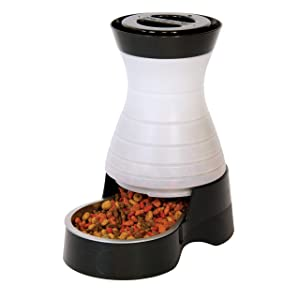 PetSafe Healthy Pet Gravity Dog and Cat Food Station