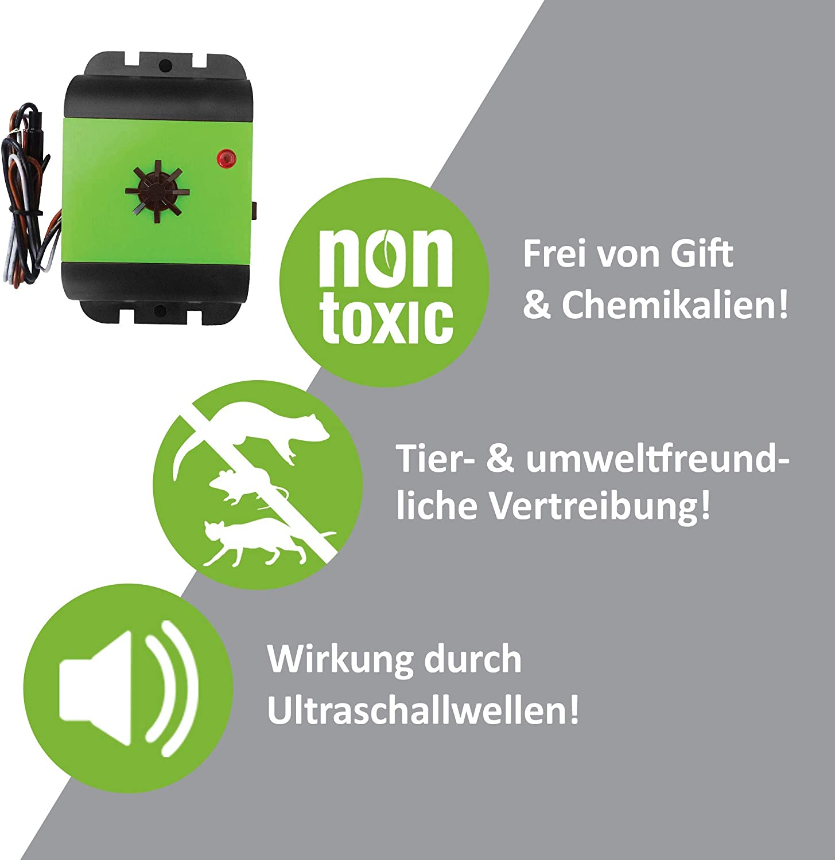 Isotronic D/éflecteurs de martres pour Voiture 12 V sans martres Protection Contre Les martres Haute fr/équence avec ultrasons