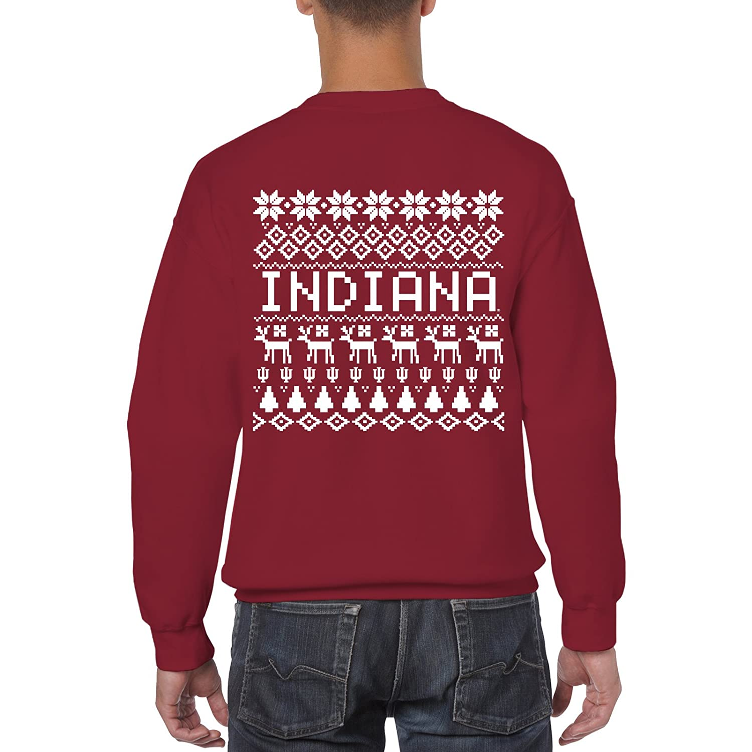 NCAA Holiday Ugly Sweater, Team Color Crewneck, College, University