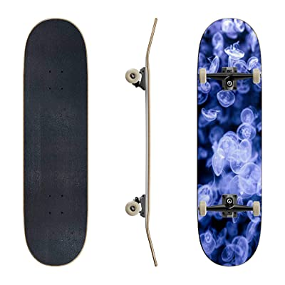 EFTOWEL Skateboards Group of Jellyfish Jellyfish Stock Pictures Royalty Free Photos Classic Concave Skateboard Cool Stuff Teen Gifts Longboard Extreme Sports for Beginners and Professionals : Sports & Outdoors