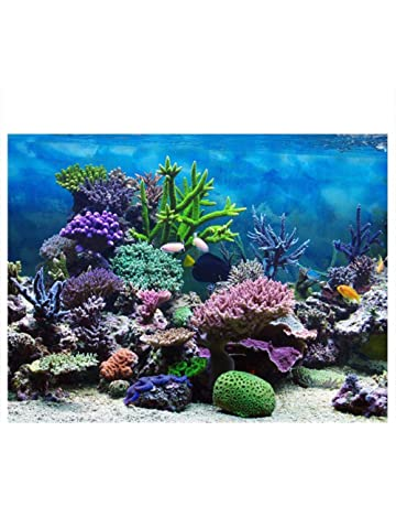 graphic about Fish Tank Background Printable referred to as Aquarium Décor Backgrounds