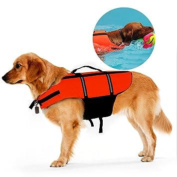 Ploopy Chaleco Salvavidas Perro, Perros de Peluche Bichon Seguridad Natación Ropa Chaleco Salvavidas con Quick
