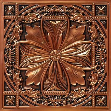 Amazon.com: De liso a hermoso en horas DCT10ac-24x24 techo ...