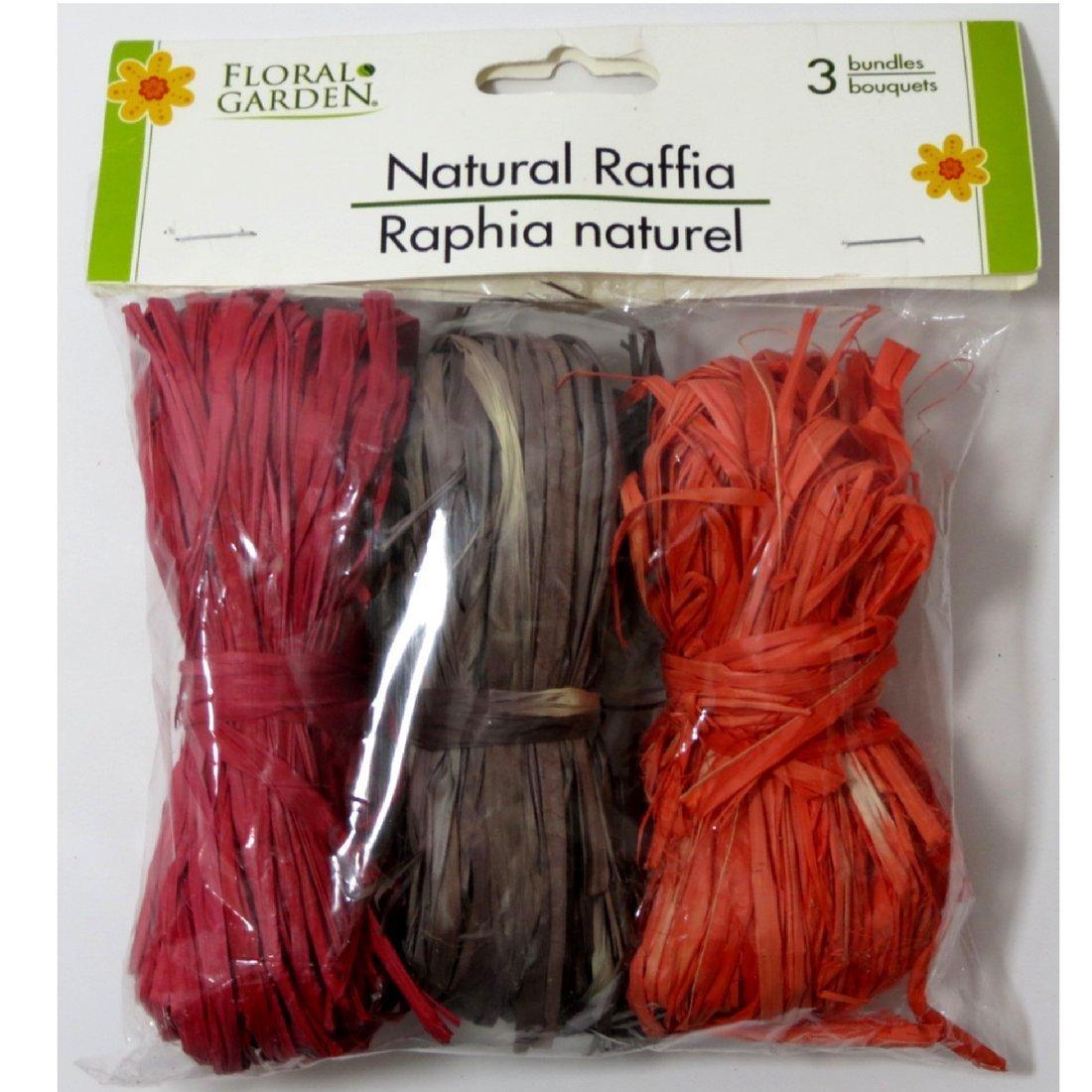 Natural Raffia 3 Bundle Pack Red, Orange, Brown Greenbrier 4336881824