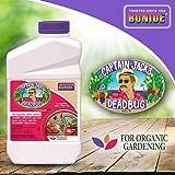 Bonide (BND253) - Captain Jack's Dead Bug Brew, Insecticide/Pesticide Concentrate (32 oz.), Brown/A