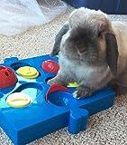 SPOT Seek-a-Treat Flip 'N Slide Treat Dispenser for Dogs | Dog Treat Dispenser | Dog Treat Dispenser Toy | Interactive Puzzle | Dog Treat Toys for Boredom | Dog Treat Toy Puzzle | Dog Toy Games