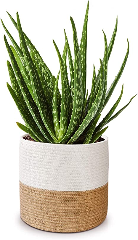 "11/"" x 11/"" Hanging Basket/×1, apricot color LEFOR/·Z Cotton Rope Plant Basket for 10 Planter//Flower Pot Woven Basket Storage Basket Organizer Modern Home D/écor"